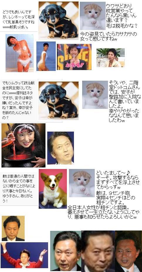 20091129ren.jpg
