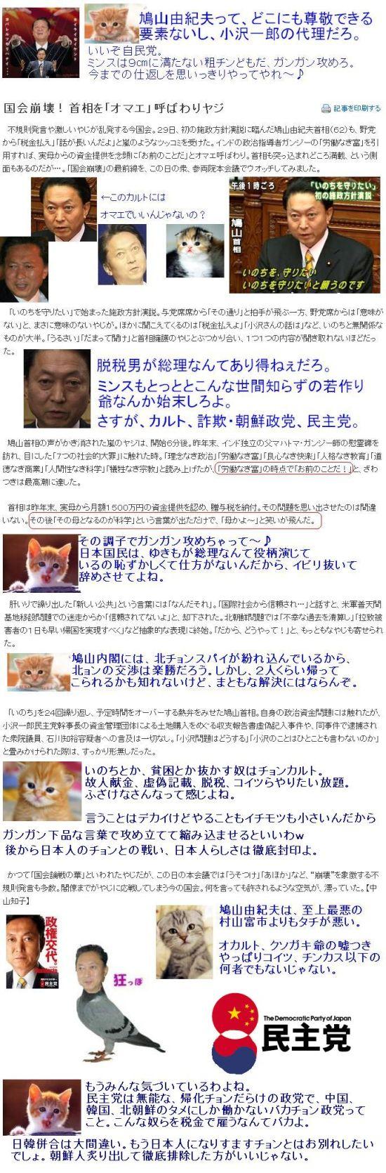 20100129HATOKASU1.jpg