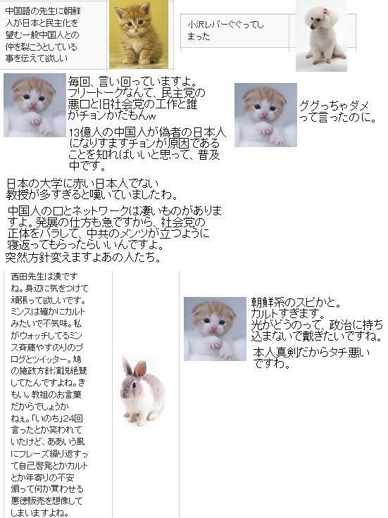 20100130TO1.jpg