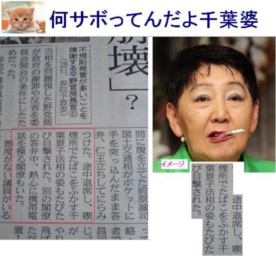 CHIBATABACO1.jpg