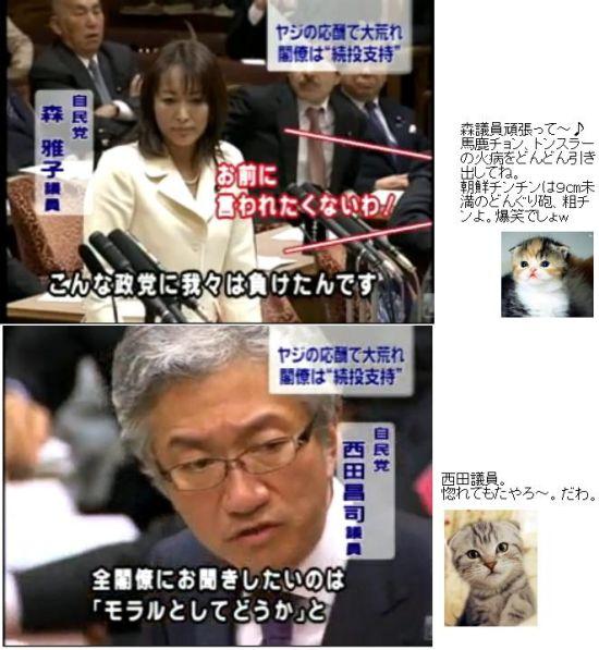 JIMINMORINISHIDA20100127.jpg