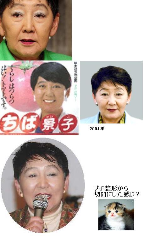 chibaseikei3.jpg