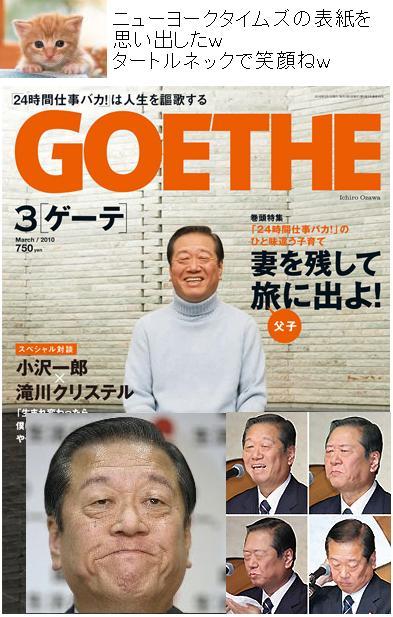 goetheozawa2010.jpg