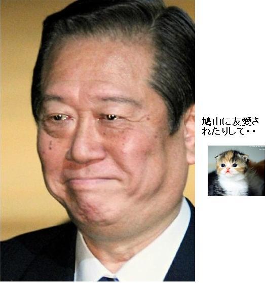 ichiroozawawww2010.jpg