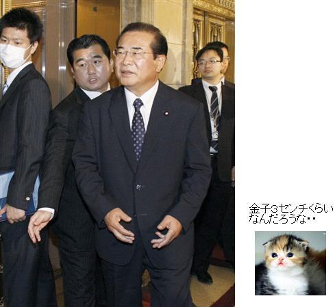 kamekoyamaoka200911.jpg