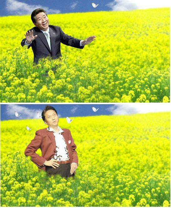 nomuyukiohatoyamahanabatake.jpg