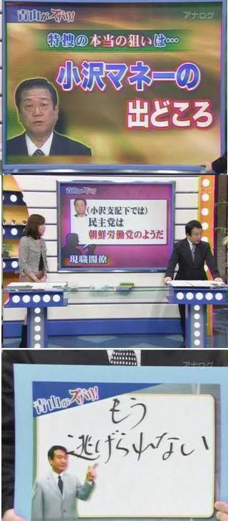 ozawa2010endw2.jpg