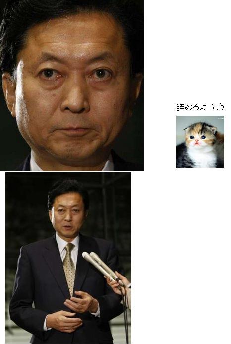 yukiohatoyama20091129.jpg