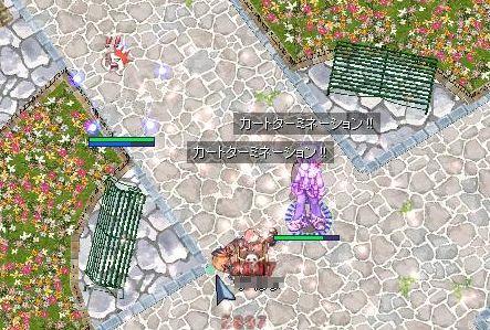 2_20100521055105.jpg