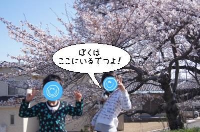 b3_20110407165027.jpg