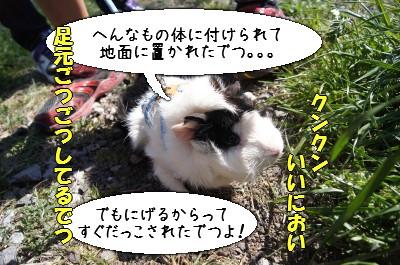 b4_20110407165112.jpg