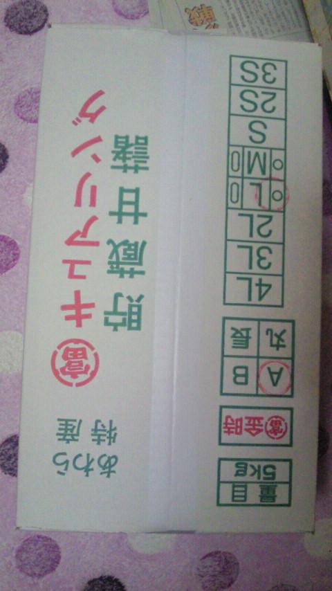 2-28-2.jpg