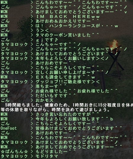 mhf_20110101_180939_223a.jpg