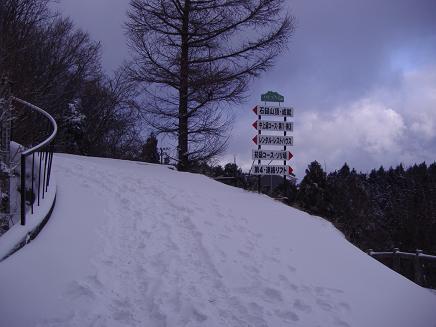 いきなり雪・・