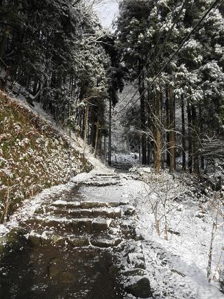 うっすら雪道