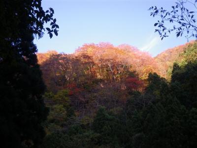 2009-11-01-020.jpg