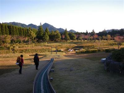 2009-11-03-008.jpg