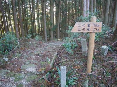 2009-11-03-011.jpg