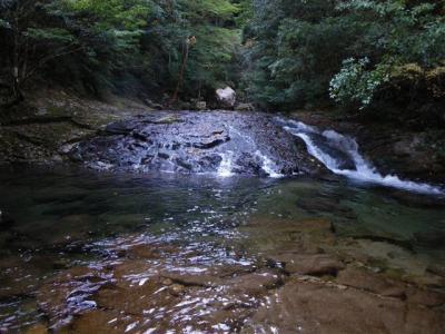 2009-11-03-137.jpg