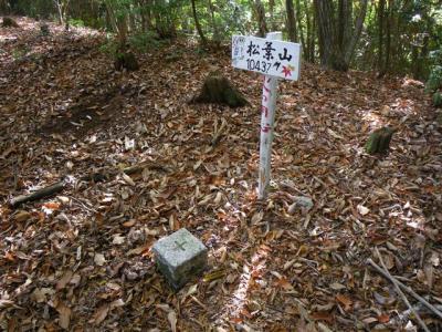 2009-11-08-021.jpg