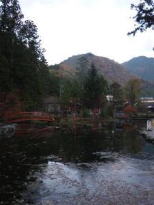 2009-11-08-104.jpg