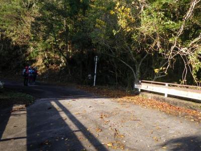 2009-11-15-002.jpg