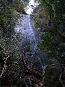 2009-11-15-139.jpg