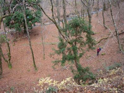 2009-11-21-027.jpg