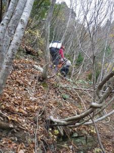 2009-11-21-084.jpg