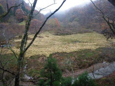2009-11-21-100.jpg
