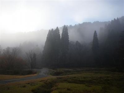 2009-11-22-001.jpg