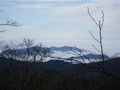 2009-11-22-281.jpg
