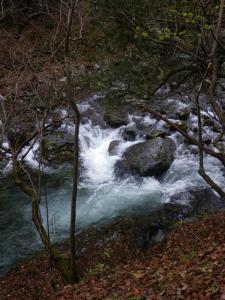 2009-11-22-065.jpg