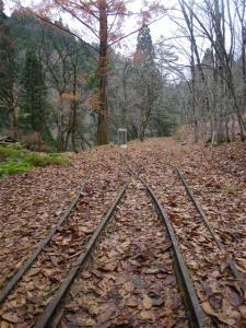 2009-11-22-093.jpg