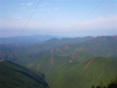 2009-11-29-051.jpg