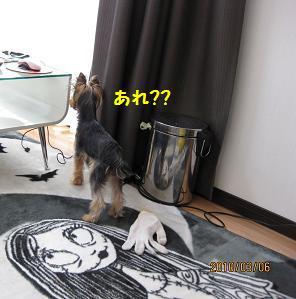 ママはどこ?