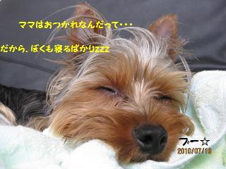 お疲れです。