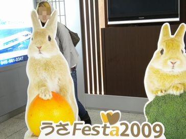 うさフェス2009 ①