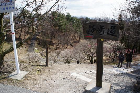 梅の里公園 階段
