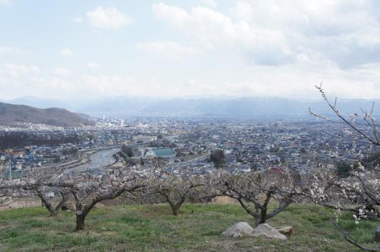 梅の里公園 甲府盆地