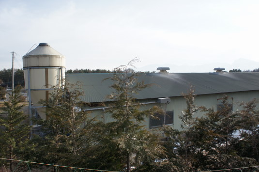 甲州地鶏 中村農場 農場