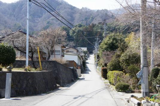 武田八幡宮 参道