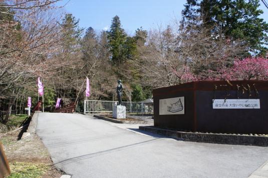 水芭蕉 藤垈の滝 公園入口