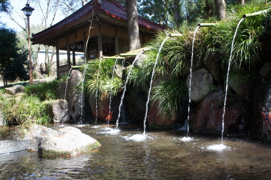 水芭蕉 藤垈の滝