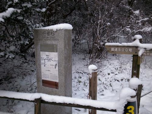 雪の行者杉1