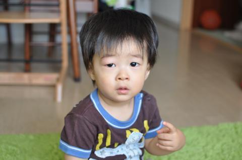 DSC_0461_convert_20110824222749.jpg
