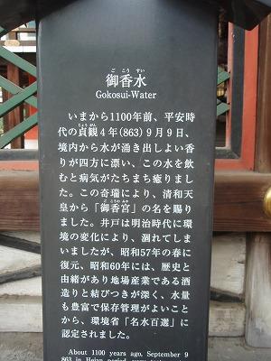 P3070279.jpg