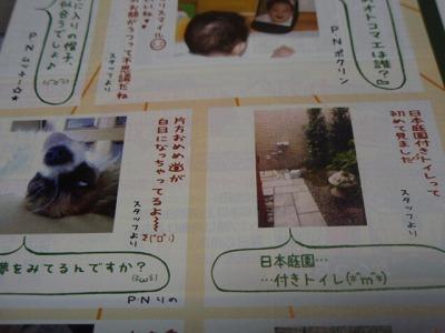 PA270129.jpg
