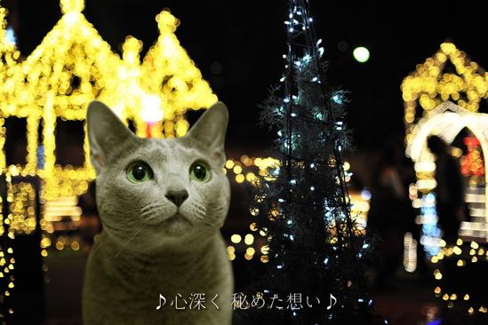 クリスマスイブ7