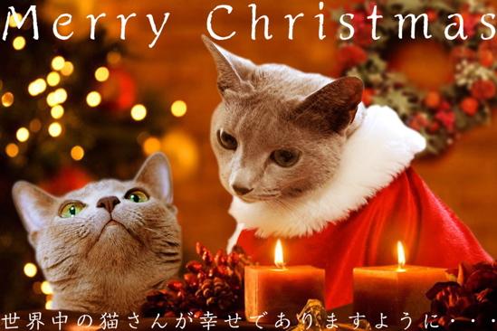 クリスマスイブ15